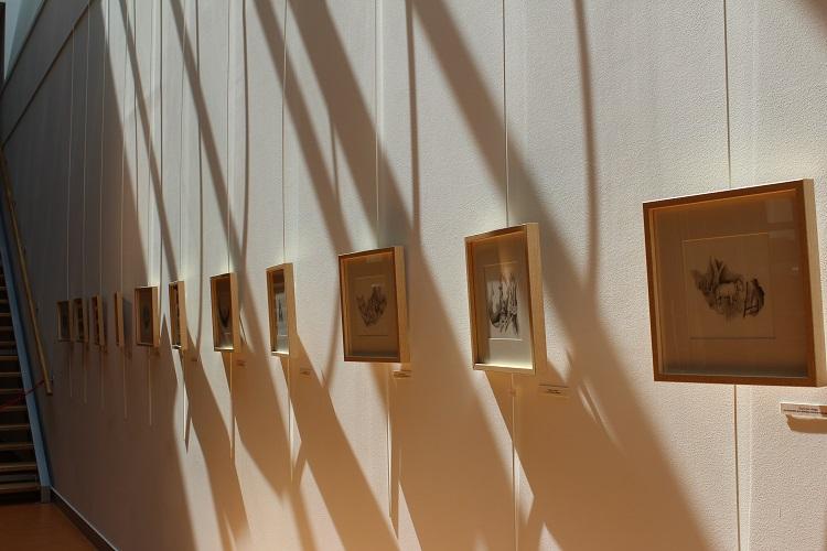 Exposition Jérémy Pailler